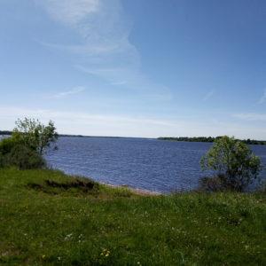 Земельный участок, Ярославская область, деревня Сорокино